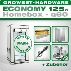 ESL Grow Set 125W Homebox Q60 Economy
