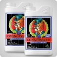 Advanced Nutrients pH Perfect Connoisseur Bloom A und B, 2x1 Liter