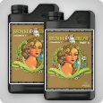 Advanced Nutrients pH Perfect Sensi Grow Coco A und B, 2x1 Liter