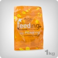 Green House Powder Feeding Short, 1kg