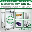 Homebox Ambient Q100 Grow Set 250W Economy