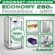 Homebox Ambient Q80 Grow Set 250W Economy